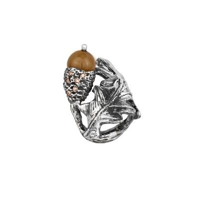 Ring Acorn